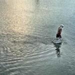 Mimpi Berjalan Atas Air