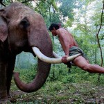 Mimpi Membunuh Gajah